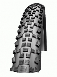 schwalbe pneu racing ralph evolution lite skin29x2 25 tlready souple