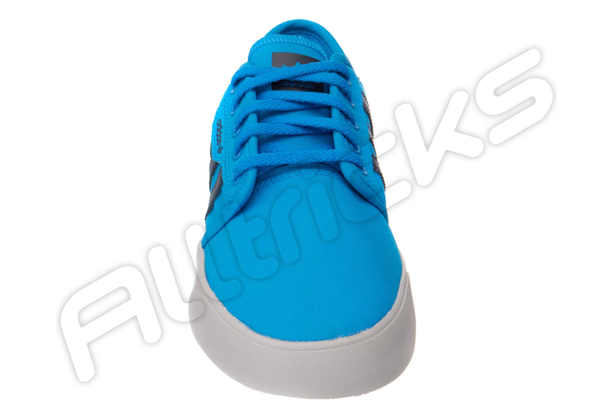 Chaussures Troy Lee Designs Seeley LTD Adidas Team Bleu