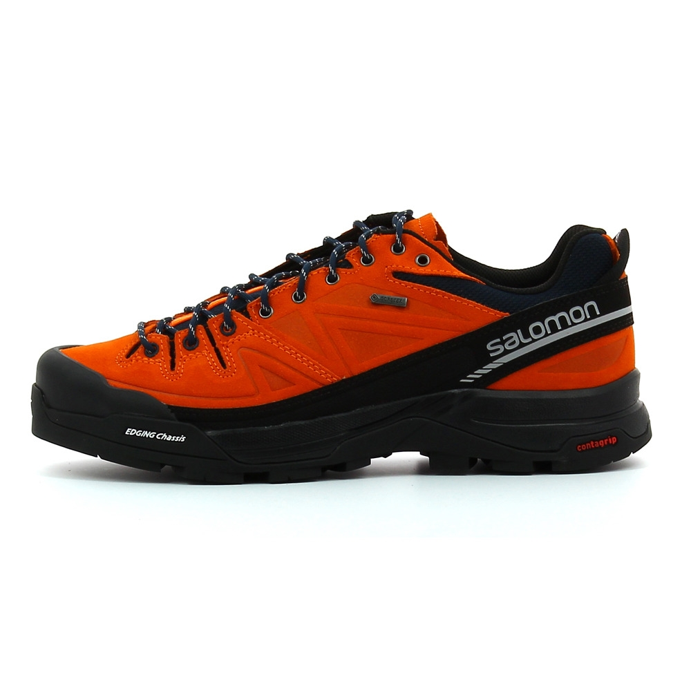 100% authentique d2489 1ec39 Chaussure de randonnée en cuir Salomon X ALP MNT Gore-Tex