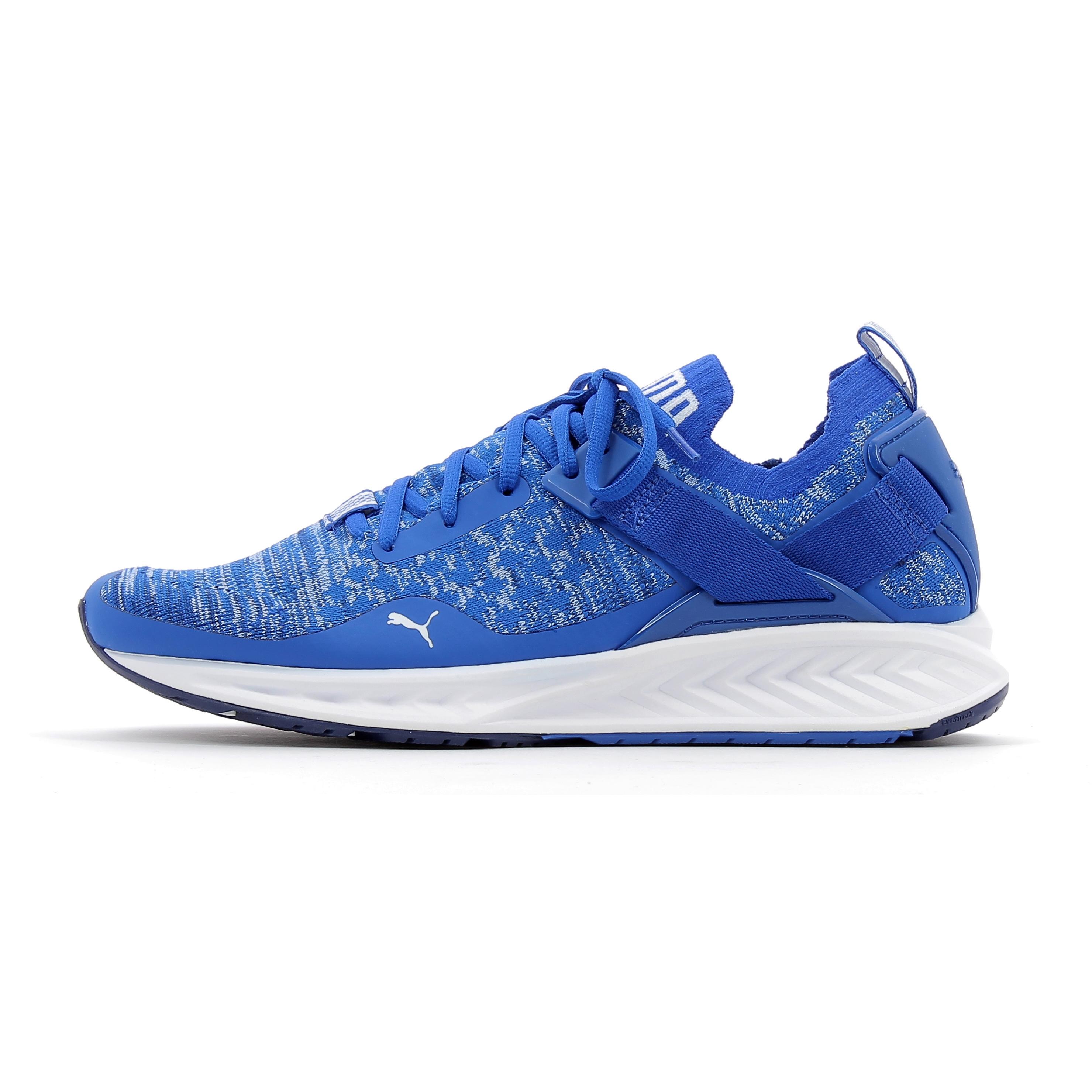 Chaussures de running Puma IGNITE EvoKnit Lo