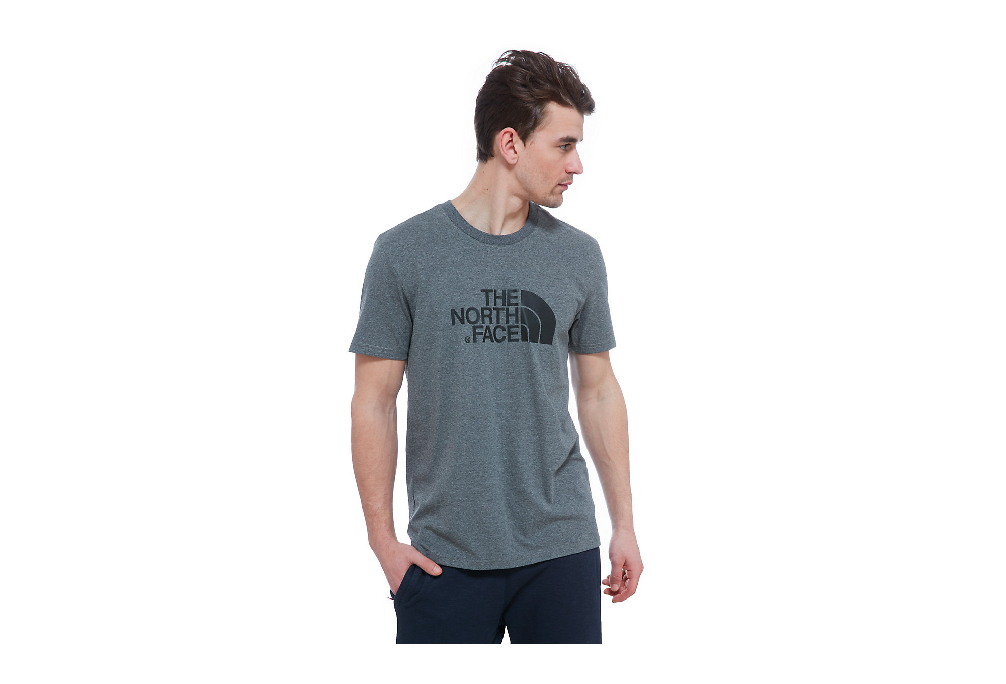 t shirt the north face easy gris. Black Bedroom Furniture Sets. Home Design Ideas