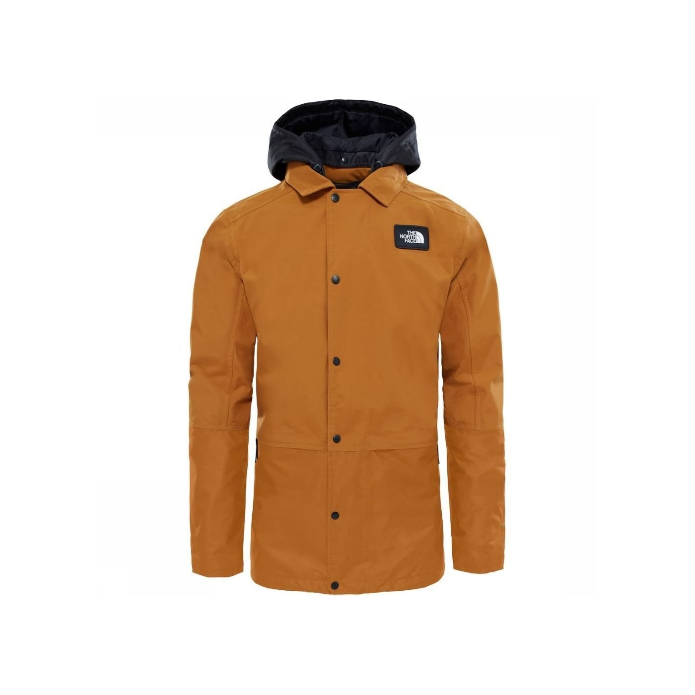 veste ski north face