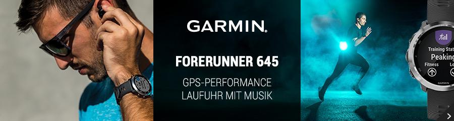 Garmin FR 645