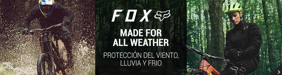 Fox Fall 18