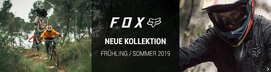 Fox Frühling / Sommer 2019