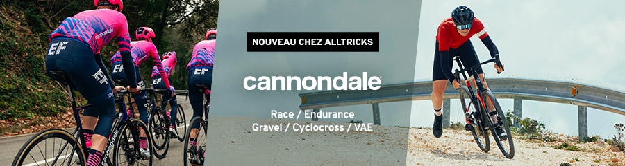 Cannondale Route