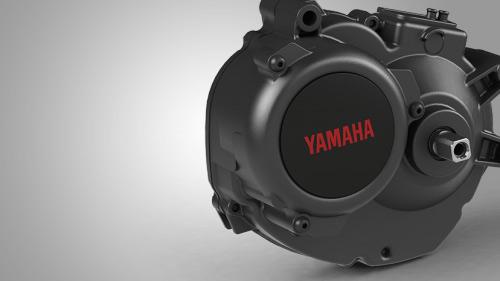 Motore Yamaha PW