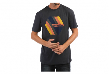 Tee-shirt Gris Homme Quiksilver RetroRights