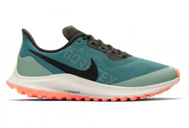 Chaussures de Trail Femme Nike Air Zoom Pegasus 36 Trail Gore-Tex Vert