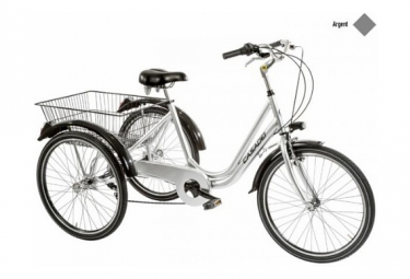 Image of Casadei tricycle 24 6v argent h47