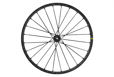 Rueda trasera Mavic Deemax Pro Sam Hill 29 '' | Boost 15x110 mm