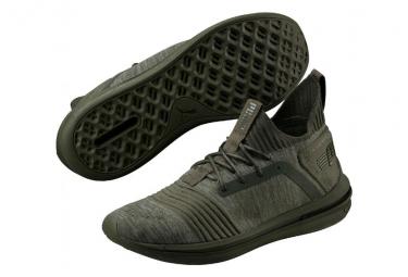chaussure puma ignite limitless