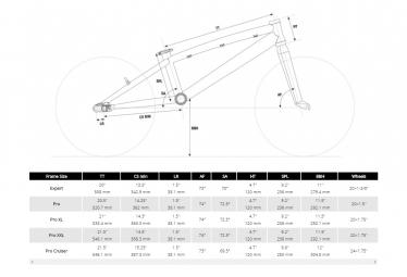 BMX Race Chase Element Pro XL Alu 21 Noir / Blanc 2021