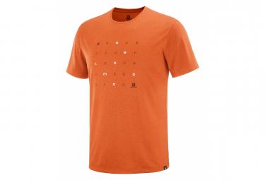 T-shirt Salomon Agile Graphic Orange