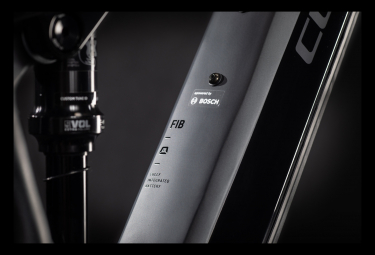 MTB Eléctrica Doble Suspensión Cube Stereo Hybrid 120 Race 625 29 29'' Gris / Noir 2021