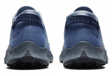 Nike Pegasus Trail 2 GTX Trail Shoes Blue Gray Men