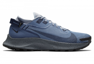 Nike Pegasus Trail 2 GTX Trail Shoes Blue Gray Men