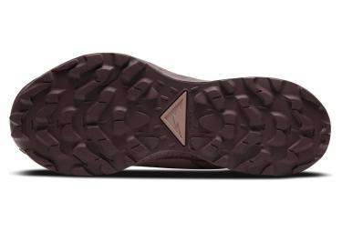 Chaussures de Trail Femme Nike Pegasus Trail 2 GTX Rose
