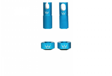 Image of Accessoires de valve tubeless peaty s x chris king mk2 turquoise