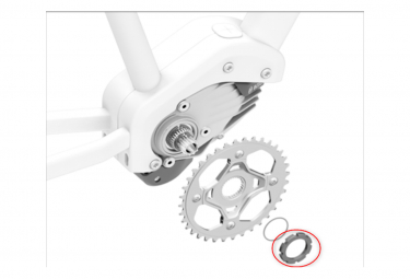 Bosch Cyclus tool for GEN4 locking ring
