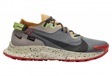 Nike Pegasus Trail 2 GTX Grigio Multi-color Mens Trail Scarpe