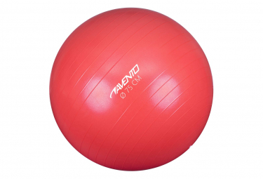 Image of Avento ballon de fitness d exercice diametre 75 cm rose