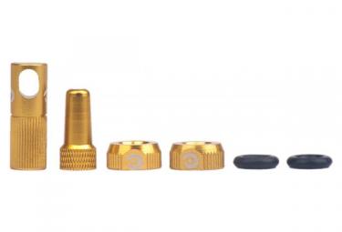 MOMUM - Kit Upgrade SAV 6 piéces - TAV BOOSTER - GOLDEN