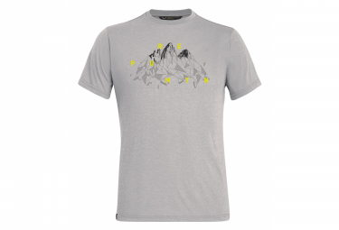 T-Shirt Salewa Illustration Dry Gris
