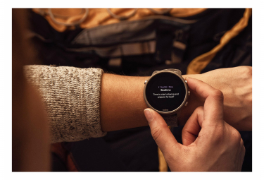 Reloj GPS Suunto 7 Stone Grey Titanium