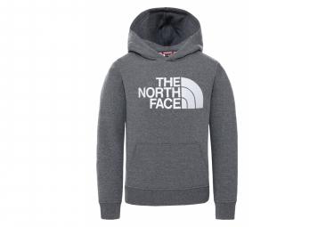 Sudadera Con Capucha The North Face Drew Peak Gris Infantil M