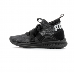 promo code 56860 398e1 Chaussures de running Puma IGNITE EvoKnit 2