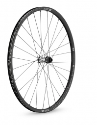DT SWISS Roue Avant 29´´ E1700 SPLINE TWO 15mm Center Lock Noir