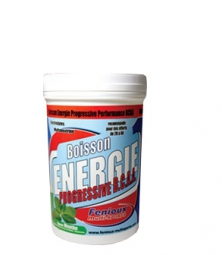 FENIOUX Multi-Sports Boisson Energie Progressive Performance BCAA 600g Gout Citron vert