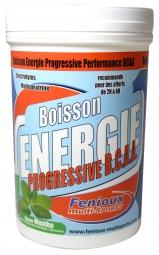 FENIOUX Multi-Sports Boisson Progressive Performance BCAA Pot de 600g Gout Menthe