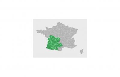 GARMIN TOPO France V4 PRO - Sud Ouest (Micro SD)