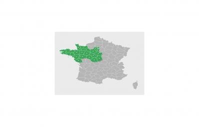 GARMIN TOPO France V4 PRO - Nord Ouest (Micro SD)