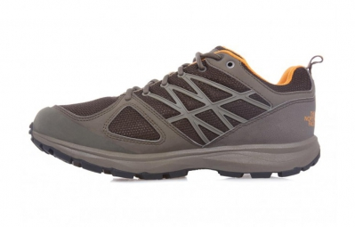 THE NORTH FACE LITEWAVE GORE TEX Marron