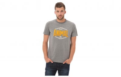 Camiseta ANIMAL LOWICK Gris