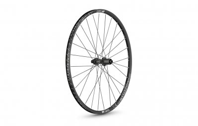 DT Swiss X1900 Spline 29'' Rear Wheel | 12x142 mm | Centerlock