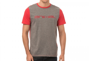 Camiseta ANIMAL BASE Gris Rojo
