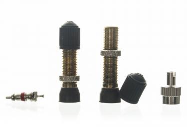 NO FLATS JOE'S Paire de Valves Tubeless Schrader 36 mm (Auto)