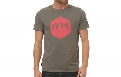T-Shirt ANIMAL KERN Gris