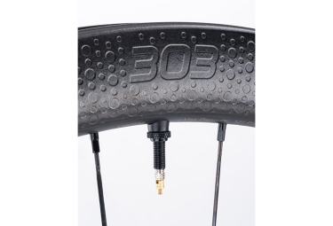 Roue Arrière Zipp 303 Firecrest Tubeless Disc   9x135mm/12x142mm   Stickers Blanc