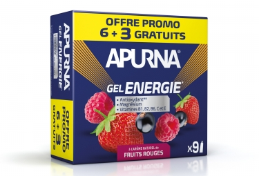 Gel energie apurna promo 6 3 2h d efforts fruit rouge 35g