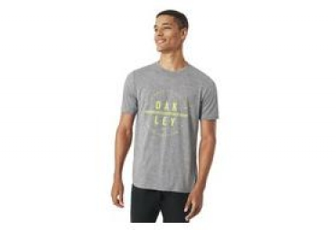 Oakley T-Shirt Kurzarm So DTP Circle Grey