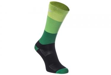 Paire de Chaussettes Massi Noir Vert