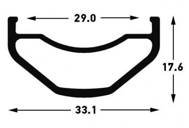 Notubes Rueda delantera Flujo S1 29 '' | Boost 15x110mm