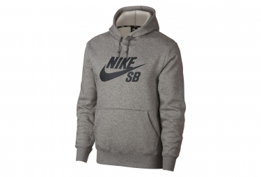 Sweat à Capuche Nike SB Icon Gris