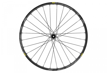 Roue avant 2019 mavic deemax elite 29 15x100mm noir