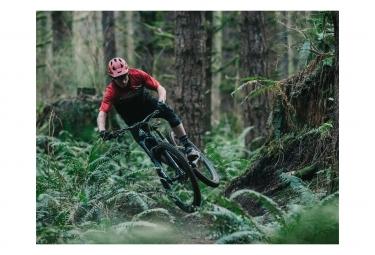 Transition Smuggler Carbon 29 '' Cuadro MTB | Fox Racing Shox DPS Elite | Negro 2019